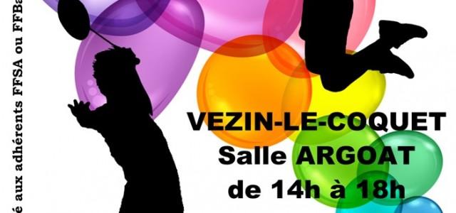 Dans le cadre de la convention signée avec l'ASCAR et la CDSA35 le 29 novembre 2014 et du projet Paraplume mené par SOLIBAD, l'AS Vezin-Le-Coquet (35) organise un tournoi partagé […]