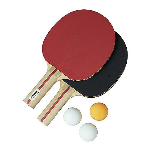 Championnat Regional Tennis De Table Sport Adapte Ploeren